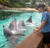 "Bell learned hand gestures to communicate with the dolphins. ""My favorite part is when they understand what it is I am trying to tell them to do,"" Bell said. ""I love my job. It is very rewarding."" Credit: Erin Nicholson"